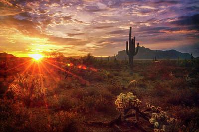 Photograph - Sonoran Sunrise Is Calling  by Saija Lehtonen