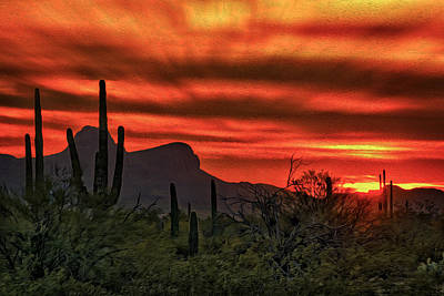 Mark Myhaver Royalty Free Images - Sonoran Sunset H39 Royalty-Free Image by Mark Myhaver