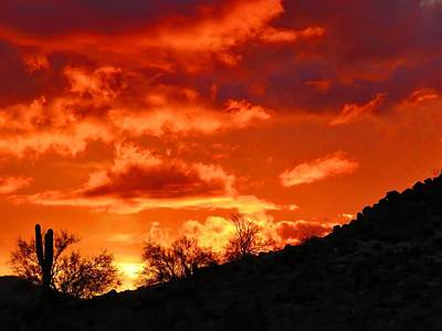 Photograph - Sonoran Sunset On Fire by Judy Kennedy