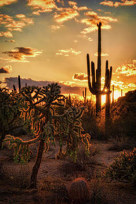 Photograph - Sonoran Sunset On The Horizon  by Saija Lehtonen