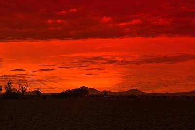 Photograph - Sonoran  Sunset by Sheila Ping