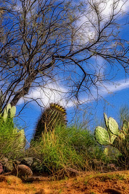 Digital Art - Sonoran Warmth Op6 by Mark Myhaver