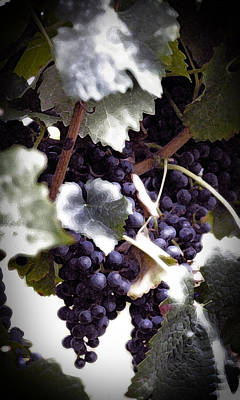 Soon To Be Wine Art Print by Cabral Stock