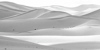 Photograph - Soothing Desert by Hitendra SINKAR