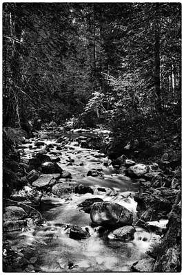 Monotone Photograph - Soothing Reeder Creek  by David Patterson