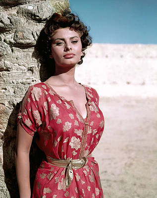 1950s Portraits Photograph - Sophia Loren, 1950s by Everett