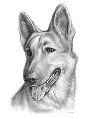 Shepherd Drawing - Sophie by Greg Joens