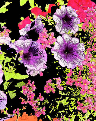 Peter Max Photograph - Sorel Flowers 1 by Steve Adams