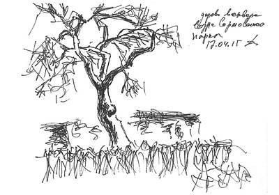 Everyday Life Drawing - Sormovski Park, Tree. 17 April, 2016 by Tatiana Chernyavskaya