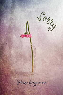 Photograph - Sorry by Randi Grace Nilsberg