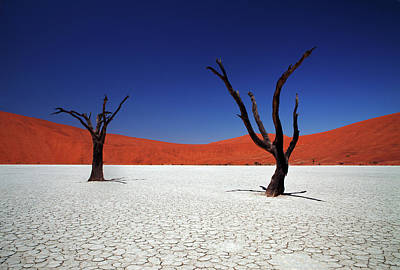 Clear Sky Photograph - Sossusvlei In Namib Desert, Namibia by Igor Bilic Photography