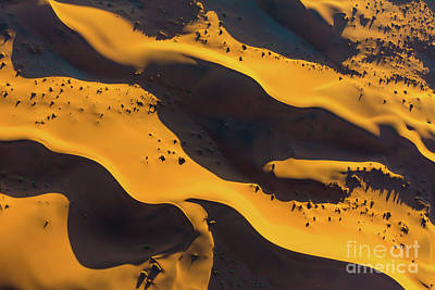 Photograph - Sossusvlei Patterns by Inge Johnsson