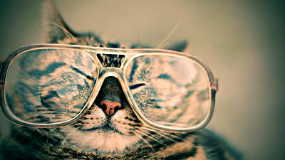 Sosy Cat With Glasses Art Print by Fbmovercrafts