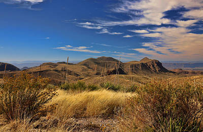 Photograph - Sotol Vista 3 by Judy Vincent