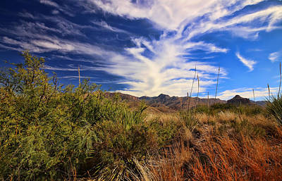 Photograph - Sotol Vista 9 by Judy Vincent