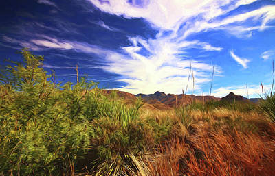 Photograph - Sotol Vista 9 Oil Painting by Judy Vincent