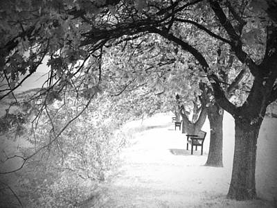 Photograph - Soul Crossing by Tara Turner