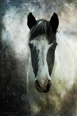 Photograph - Soul Horse, Mystical Spiritual Horse Art by Melissa Bittinger