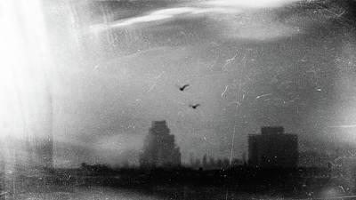 Photograph - Soulmates by Siegfried Ferlin