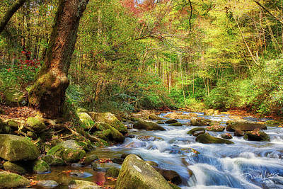 Photograph - Sounds Of Oconaluftee River by David A Lane
