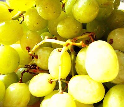 Ezekiel Painting - Sour Grapes by Dietmar Scherf