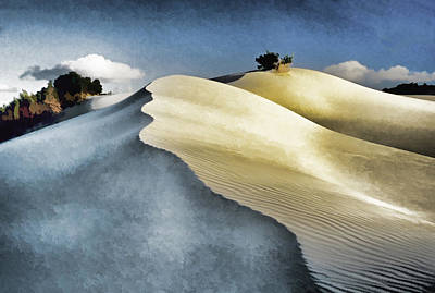 Arniston Photograph - South African Dunes by Dennis Cox
