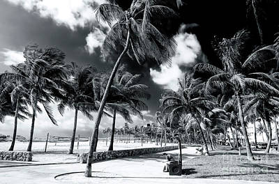 Photograph - South Beach Dreaming by John Rizzuto
