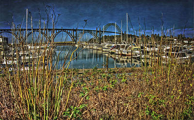 Yaquina Bay Bridge Photograph - South Beach Marina by Thom Zehrfeld