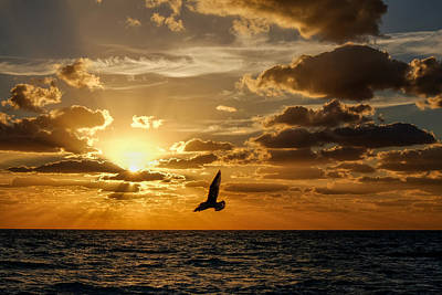 Photograph - South Beach Sunrise 1 by John McArthur