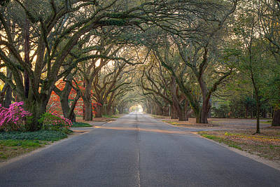 Photograph - South Boundary Avenue by Shirley Radabaugh