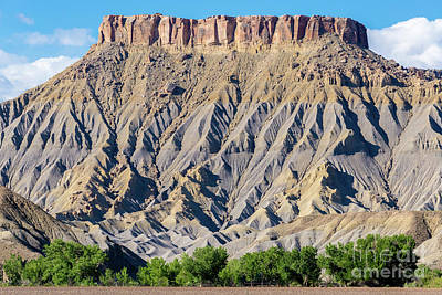Photograph - South Caineville Mesa - Utah by Gary Whitton