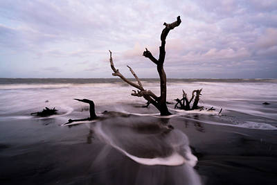 Photograph - South Carolina Coastline by Serge Skiba