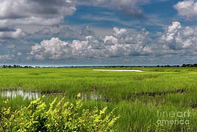 Photograph - South Carolina Sky by Dale Powell
