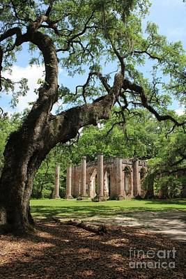 Civil War Site Photograph - South Carolina Spiritual by Carol Groenen