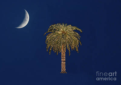 Photograph - South Carolina State Flag by Kevin McCarthy