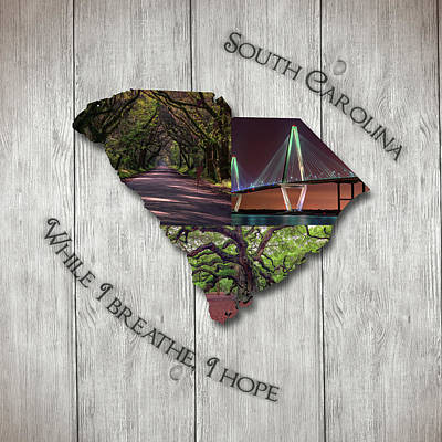 Photograph - South Carolina State Map Collage by Rick Berk