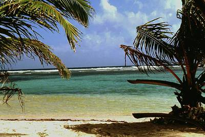 Photograph - South Caye Belize by Gary Wonning