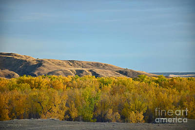 Photograph - South Dakota Beauty by Kathy M Krause