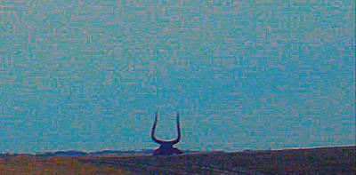 South Dakota Bull Art Print