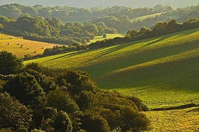 Photograph - South Downs by Will Gudgeon
