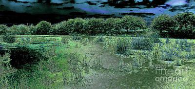 Photograph - South Florida Marshland At Dawn by Merton Allen