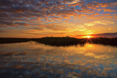 Photograph - South Florida Wetland Sunset by Juergen Roth