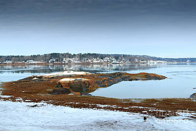 South Freeport Maine Art Print by Elizabeth Dow