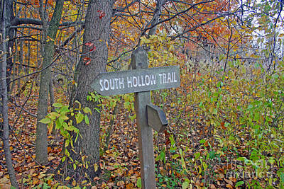 Photograph - South Hollow Trail by Kay Novy