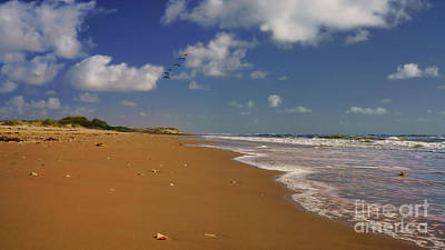 Photograph - South Padre Beach by Roxie Crouch