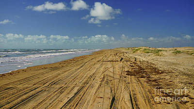 Photograph - South Padre by Roxie Crouch