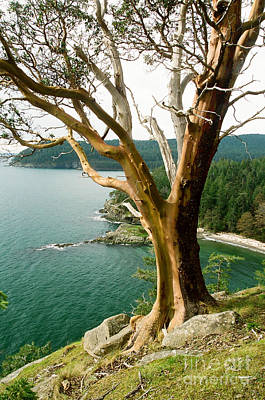 Photograph - South Pender Island by Frank Townsley