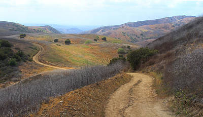 Photograph - South Ridge Trail In Chino Hills by Viktor Savchenko
