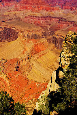 Photograph - South Rim Of Grand Canyon by Bill Barber