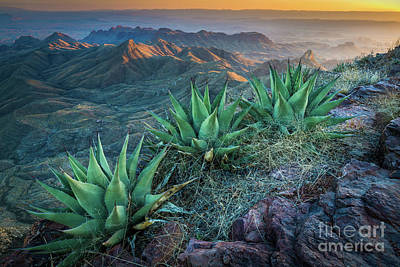 South Rim Photograph - South Rim Twilight by Inge Johnsson